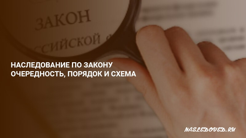 Схема вступления наследников по очереди по закону при отсутствии завещания